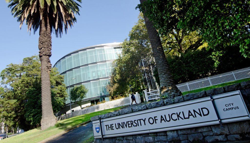best uni assignment help in auckland, kiwiassignmenthelp.com